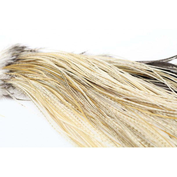 (Platinium Grade) Whiting Red Label saddle - Variant