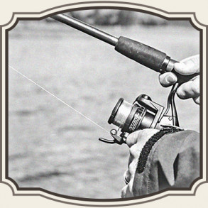 Fiskeliner