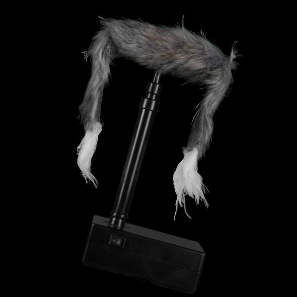 Critter - Rævejagt