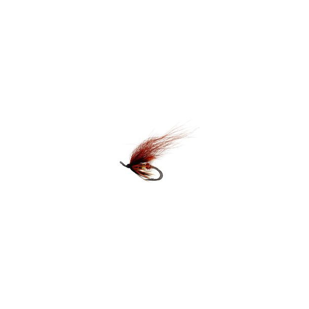 Phatakorva - #8